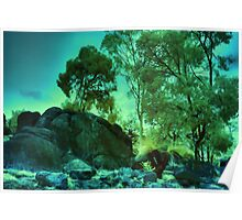 'Granite and Gum', Boya, Perth, WA Poster