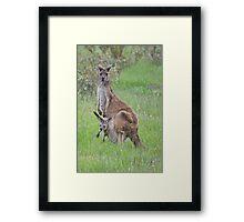 Mum & Bubs Framed Print