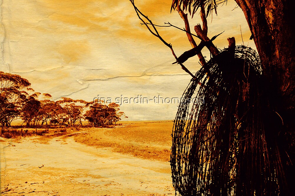 """""""barbed wire""""    outback south australia by rina sjardin-thompson"""