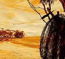 """barbed wire""    outback south australia by rina  thompson"
