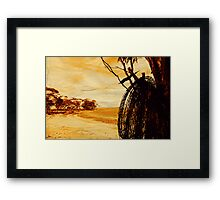 """barbed wire""    outback south australia Framed Print"