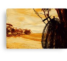 """barbed wire""    outback south australia Canvas Print"
