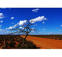"""""""red road""""                                 outback south australia Photographic Print"""