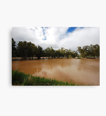 Murrumbidgee, Floods Mark 2 Canvas Print