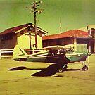 green plane by Soxy Fleming