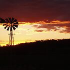 Coranning Windmill by Adrianne Yzerman