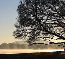 Fog on Lake Burley Griffin by Jake Gumley