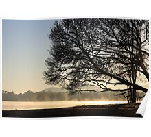 Fog on Lake Burley Griffin Poster