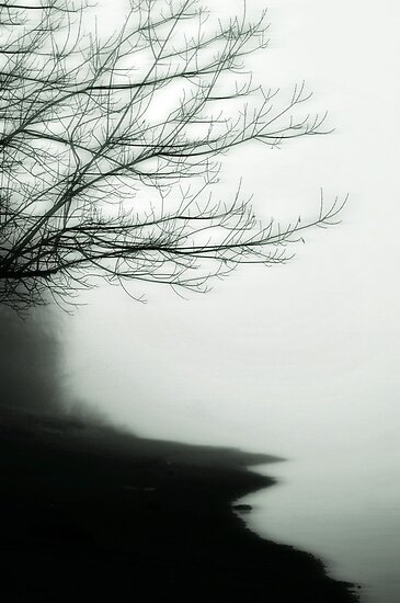 Forgetful Shores by Annie Lemay  Photography