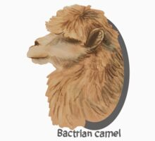 Bactrian Camel Kids Clothes