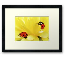 I count to ten... Framed Print