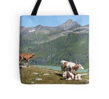 Dairy Cows High Up On A Mountain Tote Bag