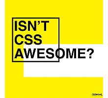 Isn't CSS Awesome? Photographic Print