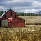The Linney Family Barn by Christine Annas