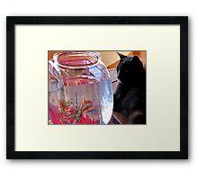 Cat TV Framed Print