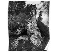 Below Arch Rock Poster