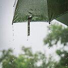 Droplets by Malik Jayawardena
