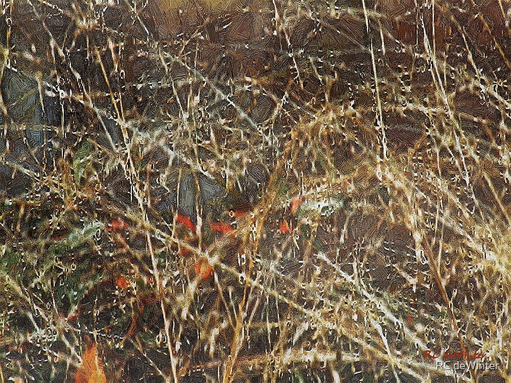 A Misty Rain in Autumn by RC deWinter