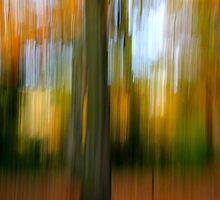 An autumn Blur by David Fletcher
