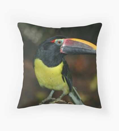 Sam the Toucan Throw Pillow
