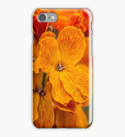Macro Orange Flowers iPhone Case/Skin
