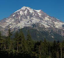 Mt. Rainier in Washington by Alan Mitchell