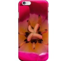 Macro Pink Tulip Flower iPhone Case/Skin