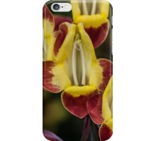 Macro Red and Yellow Flowers iPhone Case/Skin
