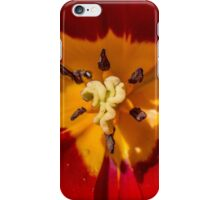 Macro Red and Yellow Tulip Flower iPhone Case/Skin