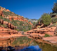 Oak Creek Canyon by Sue  Cullumber