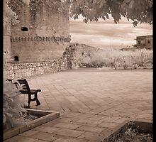 A Castle Walk, Italy by Rene Hales