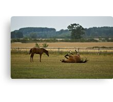 What on earth are you doing??! Canvas Print
