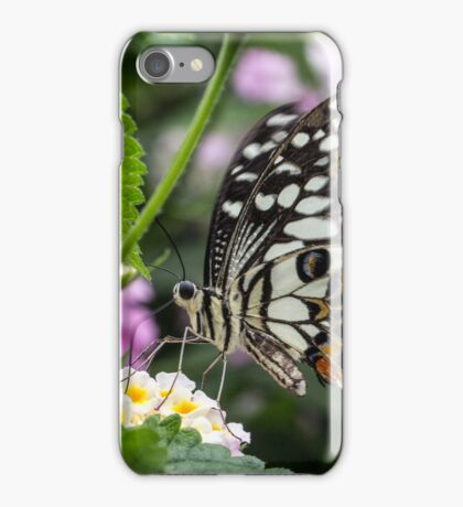 Macro Butterfly on Flowers iPhone Case/Skin