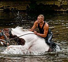Gypsy Horse Fair by Tarrby