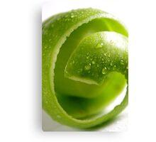 Crispy Green Apple Canvas Print