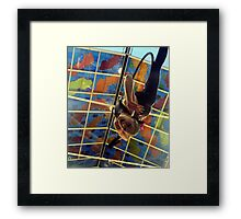 she flys through the air with the greatest of ease... Framed Print