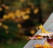 The Fallen Leaves  Sticker
