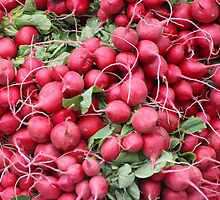 Ravenous Radishes by artistwriter