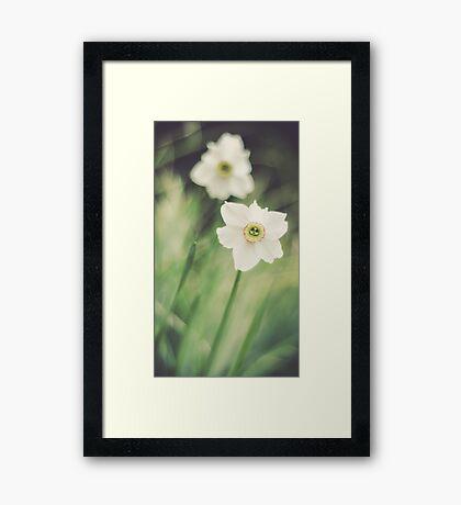 Dreamy Flowers Framed Print