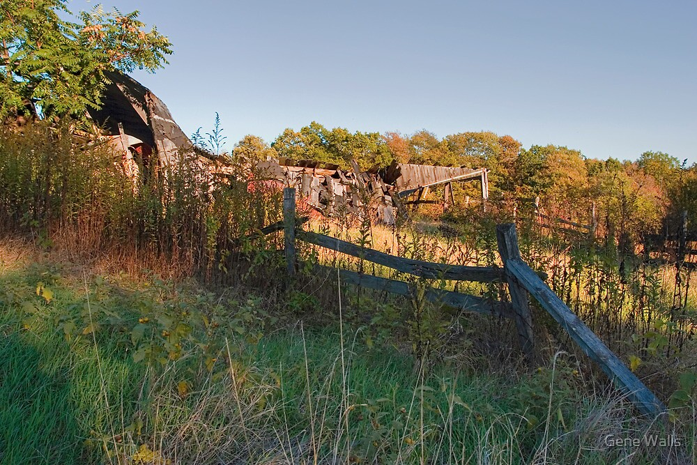 Remains of Great Granddad's Farm by Gene Walls