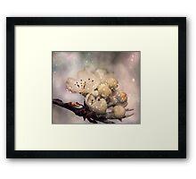 Springtime galaxy Framed Print