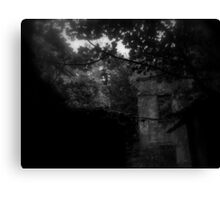 Baron Hill - Side  Canvas Print