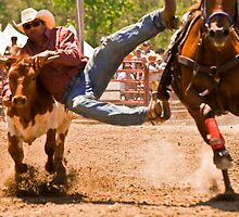 Steer Wrestling by Sue Ratcliffe