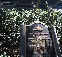 Latrobe's Waterworks  by Allen Lucas