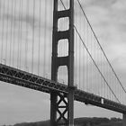 Golden gate by arawak