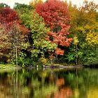 Autumn on the Pond by Monica M. Scanlan