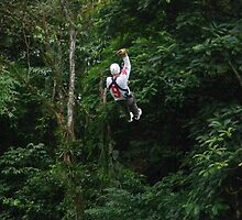Riding The Zip Line by Al Bourassa
