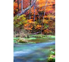 Autumn Orton Image Photographic Print