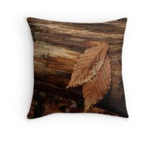 """""""Resting Place"""" Throw Pillow"""