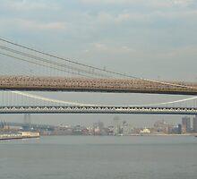 Three Bridges of New York City by Sarah McKoy